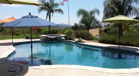 Freeform-Pool-with-Tanning-Ledge-and-Raised-Spa