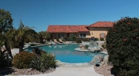 Freeform Pool with Raised Spa