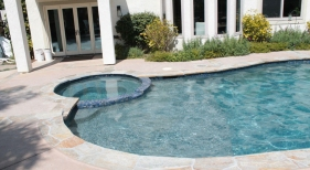 Freeform Pool with Leveled Spa and Tanning Ledge