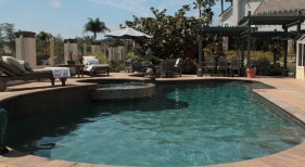 Freeform-Pool-with-Tanning-Ledge